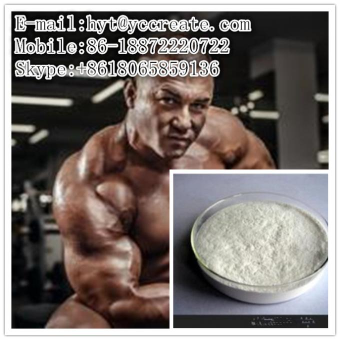 CAS 1045-69-8 Legal Testosterone Steroid Muscle Building Testosterone Acetate