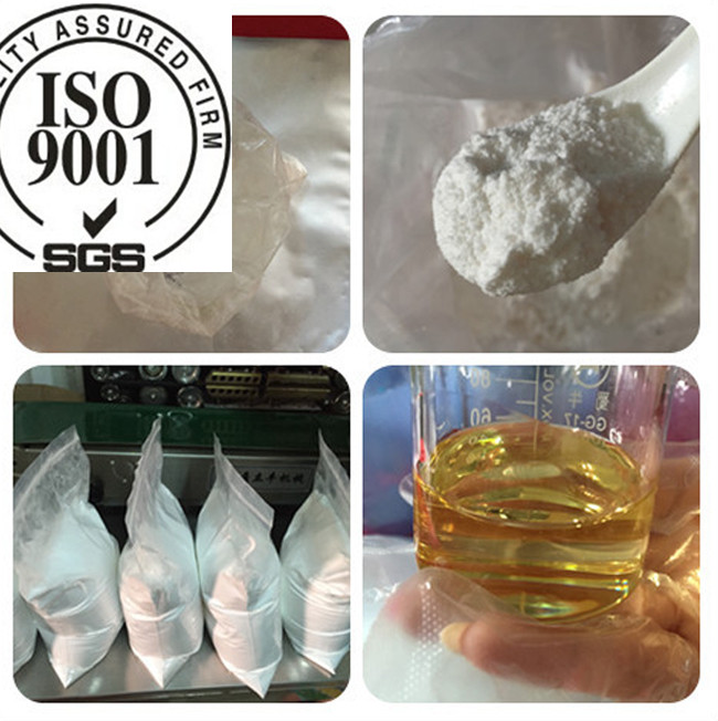 Testosterone Undecanoate Andriol Testosterone Steroid Powder / Liquid CAS 5949-44-0
