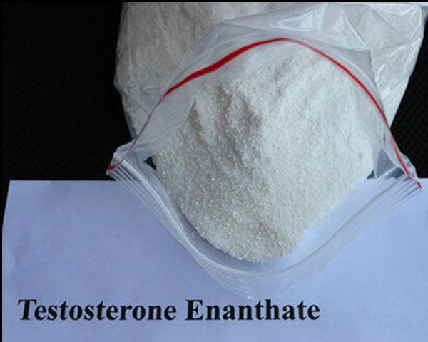 CAS 315-37-7 Testosterone Steroid Hormone , Testosterone Enanthate Cycle For Bodybuilding