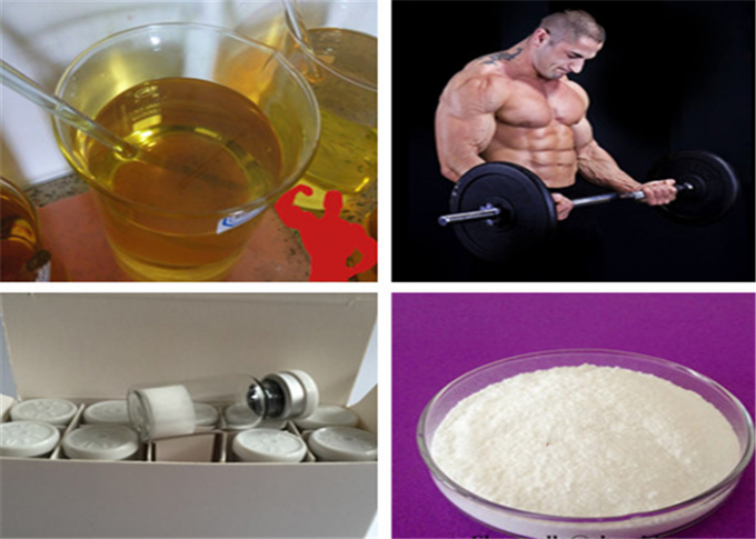 High Purity Nandrolone Undecylenate , Anabolic Steroid Nandrolone For Bodybuilding
