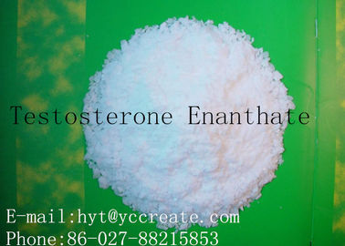 China CAS 315-37-7 Raw Steroid Powders Testosterone Enanthate Primoteston Depot 99% Assay supplier