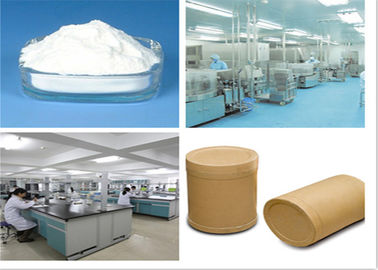 China Adrenocorticotropic Hormone Anti - Inflammatory Dexamethasone Powder 50-02-2 supplier