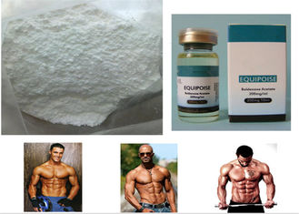 China 200mg/ml Oil based Steroids Boldenone Acetate for Muscle Growth 2363-59-9 supplier
