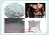 China Anabolic Steroide Testosterone Enanthate factory