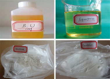 China Boldenone Steroids To Lose Fat , Boldenone Undecylenate 200 Equipoise factory